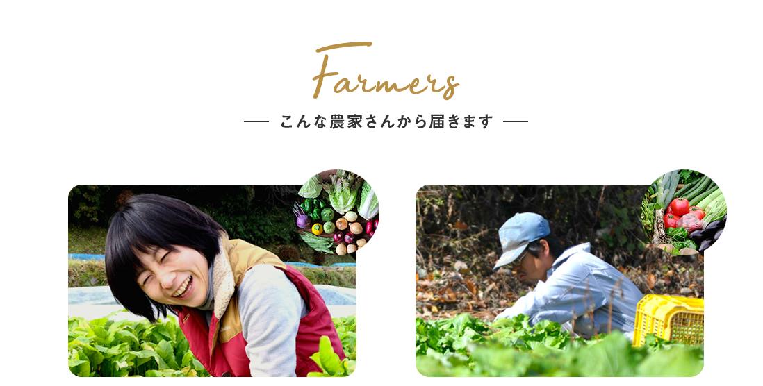 食べチョクコンシェルジュは無農薬など栽培方法にこだわった野菜が盛りだくさん
