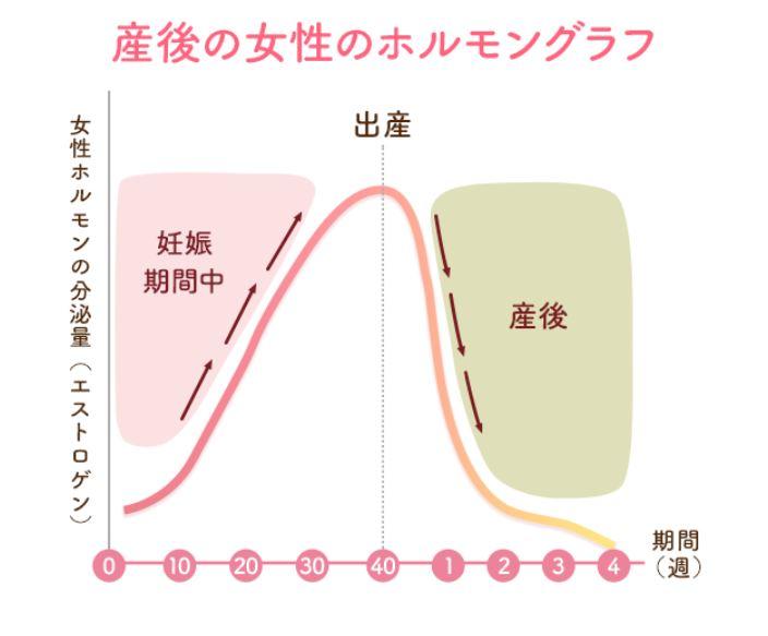 産後のホルモングラフ