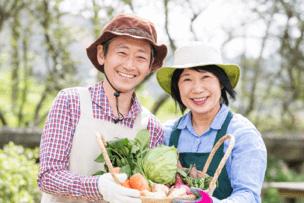 「ゴヒイキ」では旬の野菜が購入可能