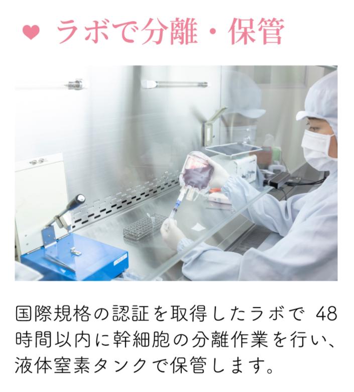 「ステムセル」は臍帯血の保管や管理も徹底